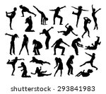 big set of black silhouettes of ... | Shutterstock . vector #293841983
