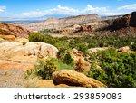 Lush Valley At Colorado...