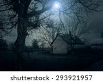 spooky house in the forest at... | Shutterstock . vector #293921957