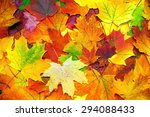 Background With Autumn Colorfu...