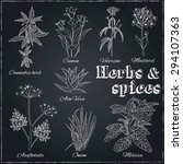 vector hand drawn set with... | Shutterstock .eps vector #294107363