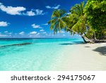 coco palms on paradise beach  | Shutterstock . vector #294175067