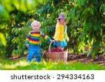 kids picking cherry on a fruit... | Shutterstock . vector #294334163