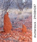 Two Termite Mounts In The...