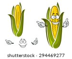 sweet corn or maize vegetable... | Shutterstock .eps vector #294469277