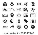vector camera functions   menu... | Shutterstock .eps vector #294547463