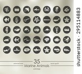 marine animals modern icons for ... | Shutterstock .eps vector #295114883
