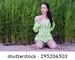 the fashionable beauty in a... | Shutterstock . vector #295206503