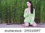 the fashionable beauty in a... | Shutterstock . vector #295210097