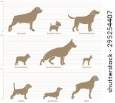 dogs on the dimensional scale.... | Shutterstock .eps vector #295254407