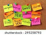 thank you  text  gratitude. | Shutterstock . vector #295258793