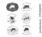 beef label. vector set of... | Shutterstock .eps vector #295283093