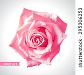 Rose Close Up. Vector Art. Lov...