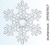 Big Transparent Snowflake In...