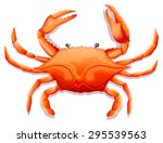 Close Up Fresh Crab With Sharp...