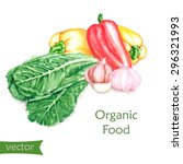 hand drawn watercolor food... | Shutterstock .eps vector #296321993