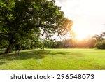 Summer Of Green Field Flare