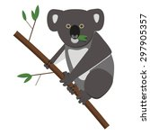 Koala Bear Eating...