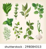 green fragrant seasoning and... | Shutterstock .eps vector #298084313
