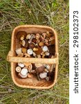 Small photo of Weaved basket full of wild mushrooms (mainly of porcini)
