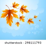Autumn Leaves  Background Of...