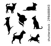 Stock vector chihuahua small dog vector icons and silhouettes set of illustrations in different poses 298688843