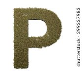 letter p made of dead grass ...