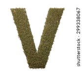 letter v made of dead grass ...