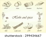 vector set of herb and spices... | Shutterstock .eps vector #299434667