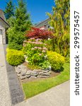 flowers in front of the house ... | Shutterstock . vector #299575457