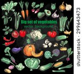 big set of vegetables. vector... | Shutterstock .eps vector #299643473