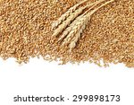 Wheat Grains On A White...