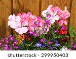 Bright Floribunda Of Summer...
