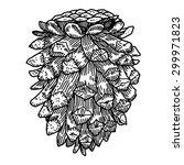 pine cone | Shutterstock .eps vector #299971823