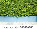 wood texture on green grass... | Shutterstock . vector #300016103