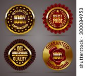 set of luxury gold badges with...   Shutterstock .eps vector #300084953