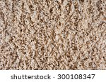 texture of a brown carpet with... | Shutterstock . vector #300108347