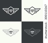 badge and shield with wings.... | Shutterstock .eps vector #300110267