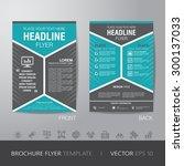 corporate hexagonal brochure... | Shutterstock .eps vector #300137033