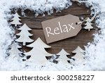 brown christmas label with... | Shutterstock . vector #300258227