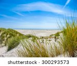 beautiful dune landscape and... | Shutterstock . vector #300293573