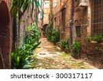 hidden streets of the ancient... | Shutterstock . vector #300317117
