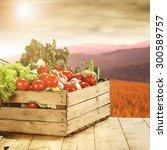 basket of vegetables  | Shutterstock . vector #300589757