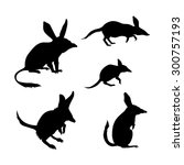 bandicoot vector icons and... | Shutterstock .eps vector #300757193