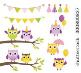 vector birthday party elements... | Shutterstock .eps vector #300800837