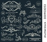 vintage set decor elements.... | Shutterstock .eps vector #300903053
