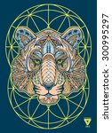 zentangle tiger vector... | Shutterstock .eps vector #300995297