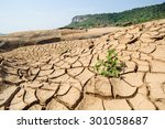 Dried River Bed With A Small...