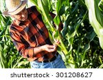senior farmer in a field... | Shutterstock . vector #301208627