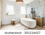 interior of a modern bathroom...   Shutterstock . vector #301216427